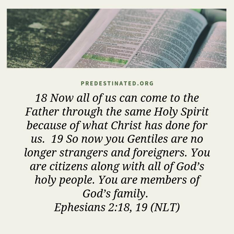 Ephesians 2:18-19